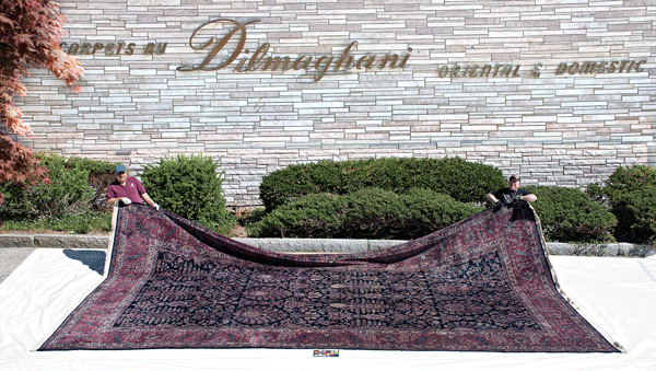 Oriental Rugs & Carpets by Dilmaghani