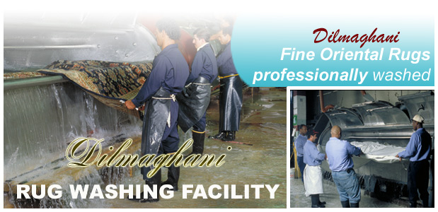 Dilmaghani Rug Washing Facility